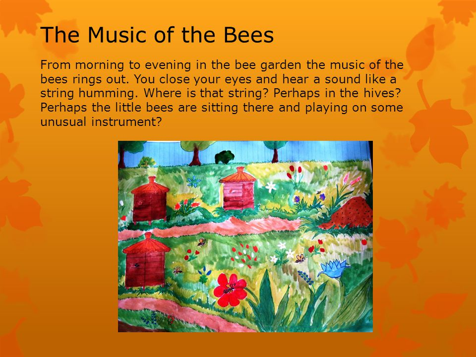 But the music is ringing everywhere, near the hives, in the garden, in the flowering buckwheat.