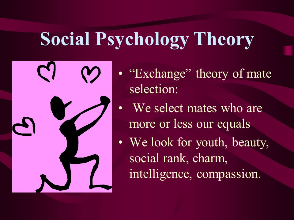 Social Psychology Theory Exchange theory of mate selection: We select mates who are more or less our equals We look for youth, beauty, social rank, charm, intelligence, compassion.