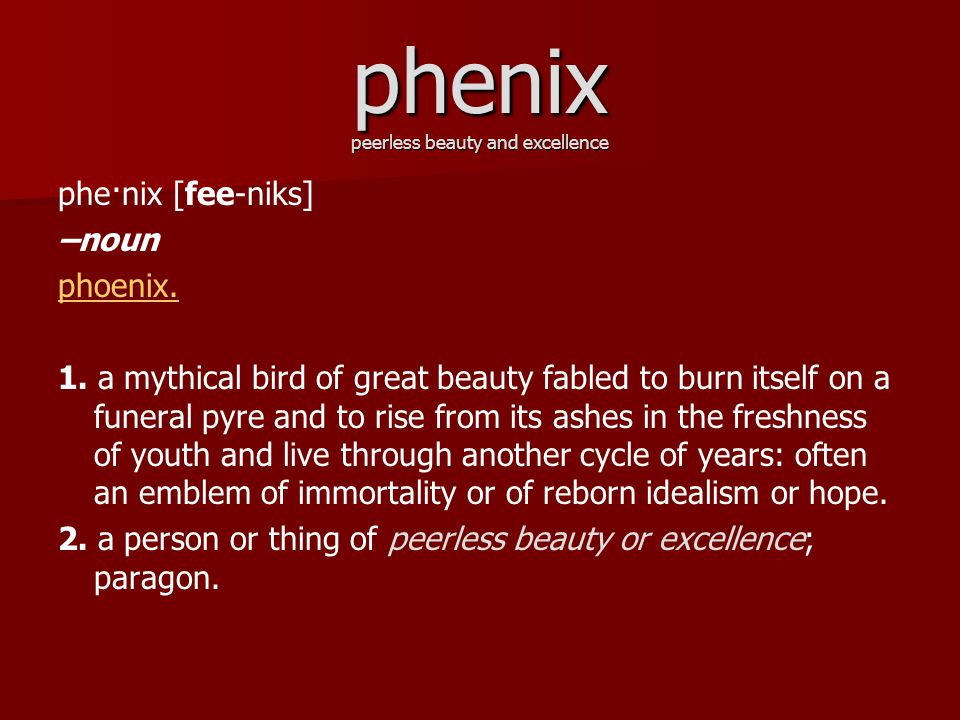 phe·nix [fee-niks] –noun phoenix.1.