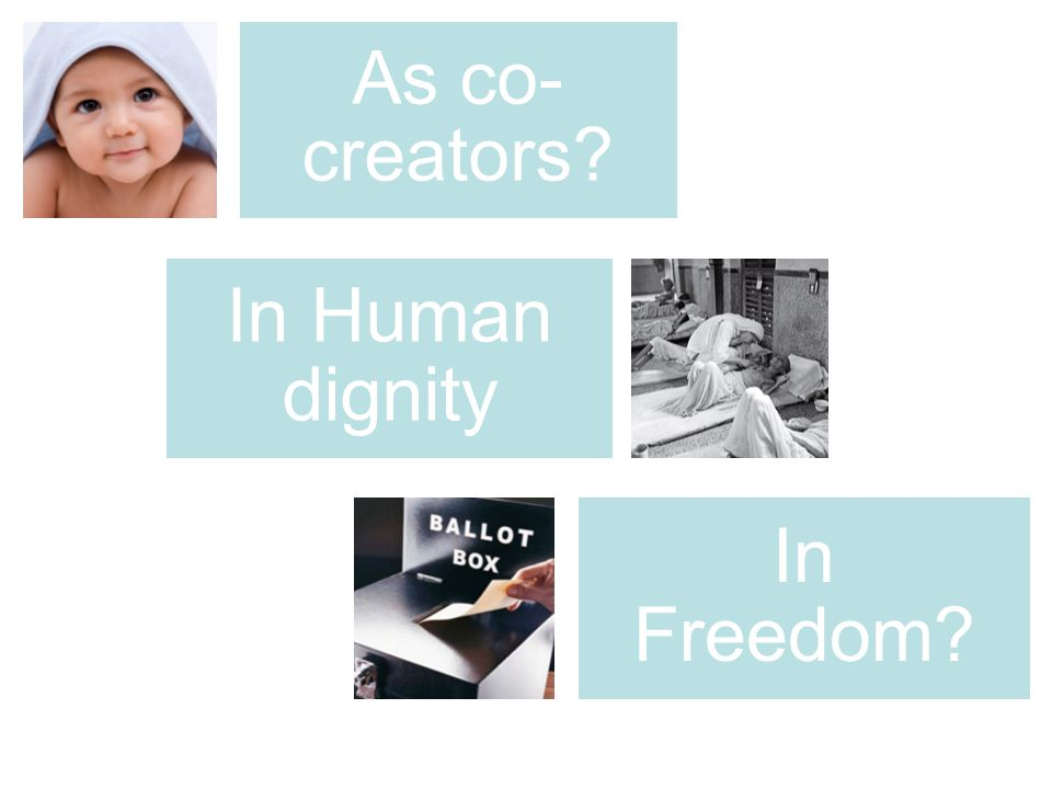 As co- creators? In Human dignity In Freedom?