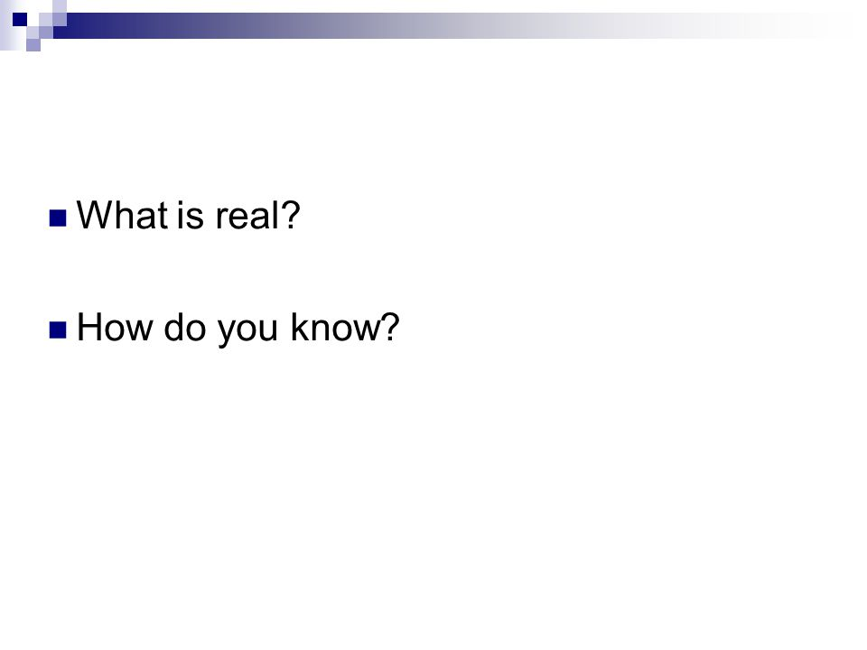 What is real? How do you know?