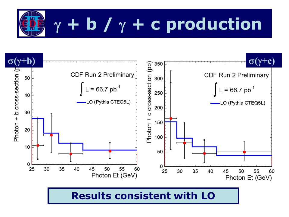 + b / + c production Results consistent with LO ( +b) ( +c)