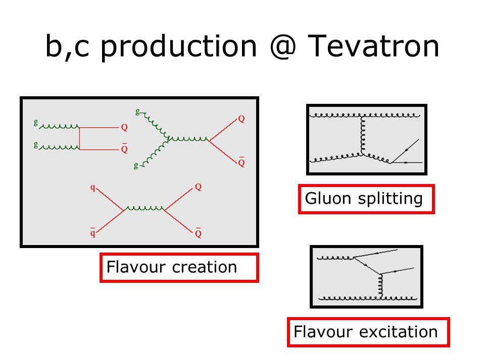 b,c production @ Tevatron Gluon splitting Flavour excitation Flavour creation