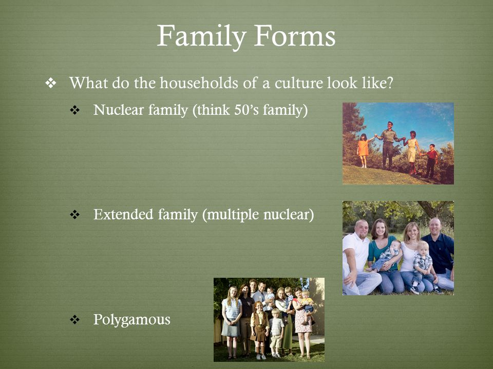 Family Forms What do the households of a culture look like.