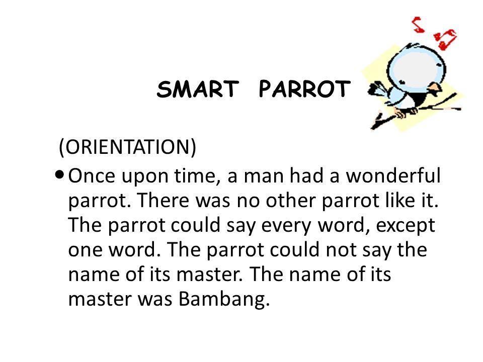 SMART PARROT