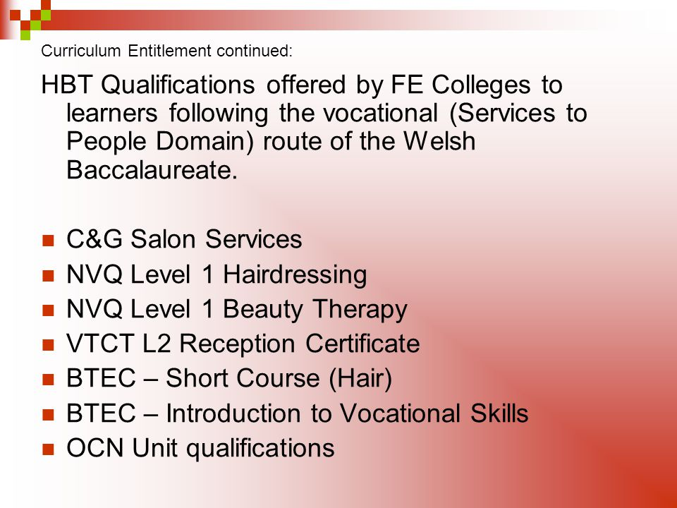 Curriculum Entitlement continued: HBT Qualifications offered by FE Colleges to learners following the vocational (Services to People Domain) route of the Welsh Baccalaureate.