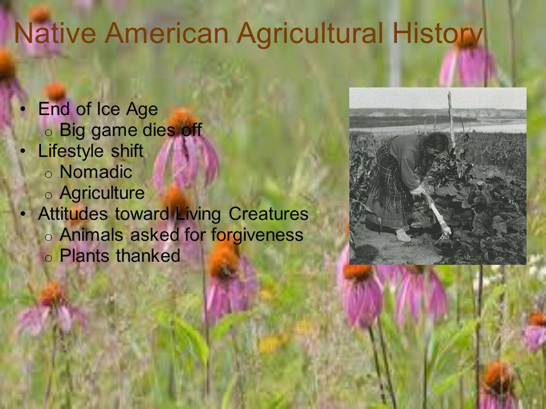 Native American Agricultural History End of Ice Age o Big game dies off Lifestyle shift o Nomadic o Agriculture Attitudes toward Living Creatures o Animals asked for forgiveness o Plants thanked