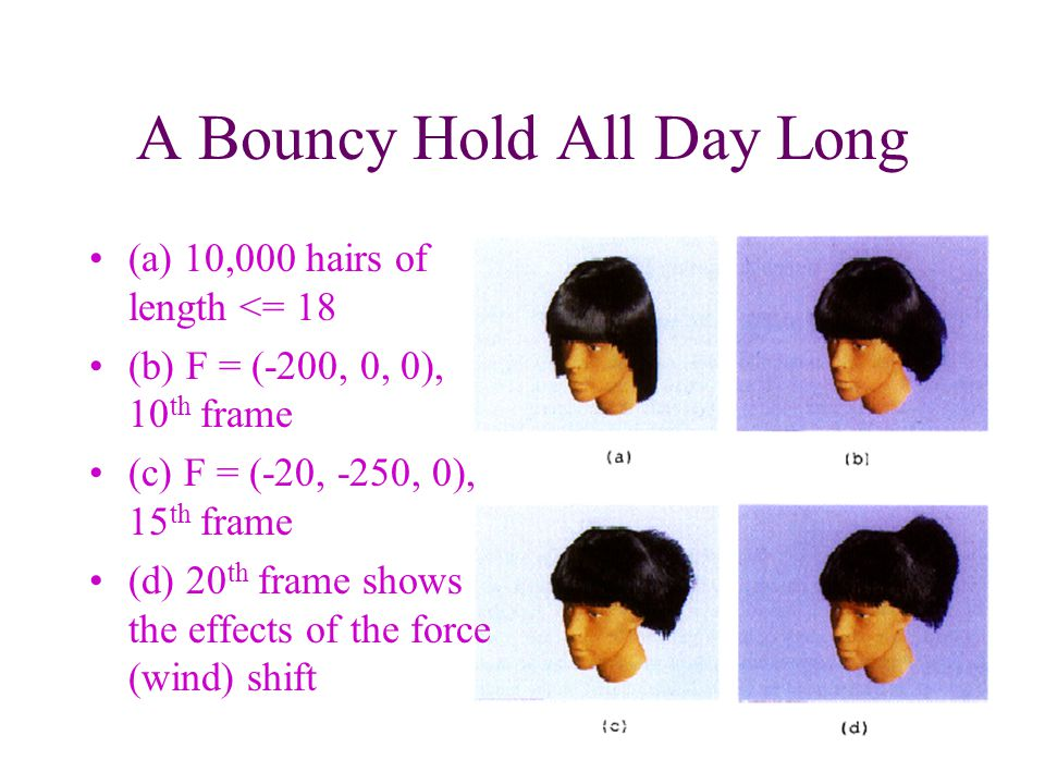 A Bouncy Hold All Day Long (a) 10,000 hairs of length <= 18 (b) F = (-200, 0, 0), 10 th frame (c) F = (-20, -250, 0), 15 th frame (d) 20 th frame shows the effects of the force (wind) shift