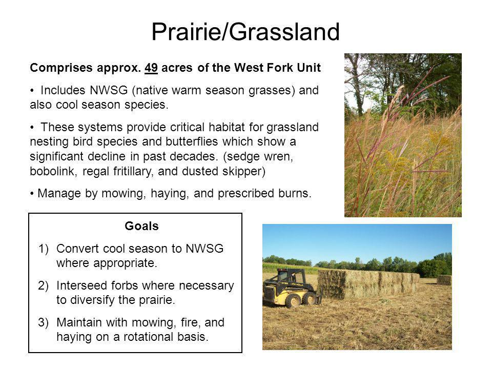 Prairie/Grassland Comprises approx. 49 acres of the West Fork Unit Includes NWSG (native warm season grasses) and also cool season species. These syst