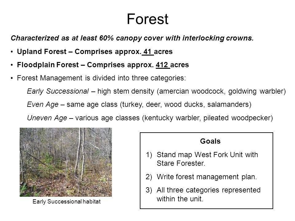 Forest Characterized as at least 60% canopy cover with interlocking crowns. Upland Forest – Comprises approx. 41 acres Floodplain Forest – Comprises a