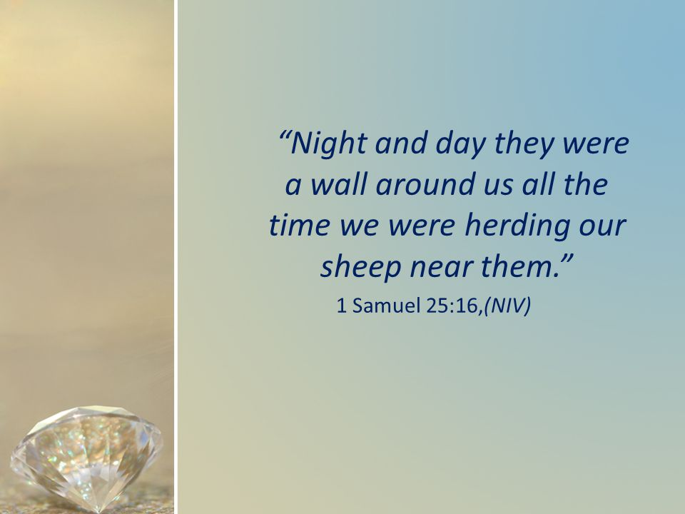 Night and day they were a wall around us all the time we were herding our sheep near them. 1 Samuel 25:16,(NIV)