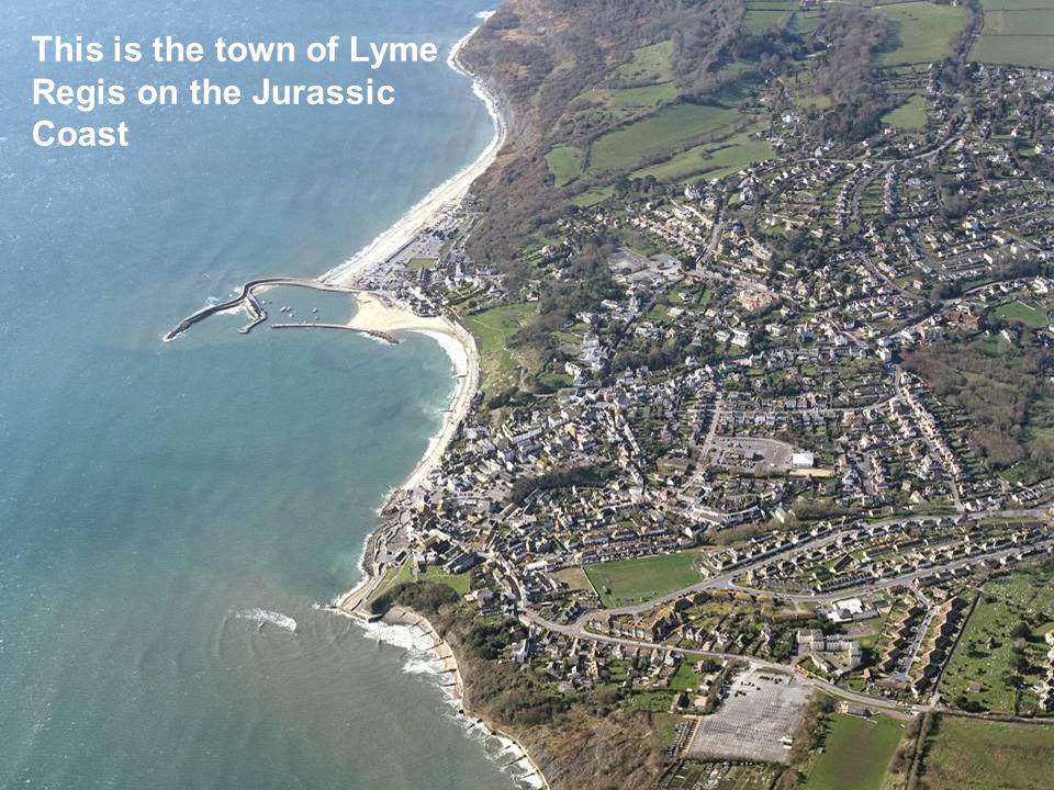 This is the town of Lyme Regis on the Jurassic Coast