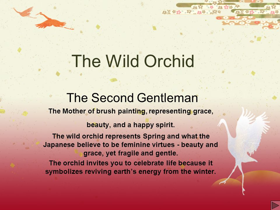The Wild Orchid The Second Gentleman The Mother of brush painting, representing grace, beauty, and a happy spirit. The wild orchid represents Spring a