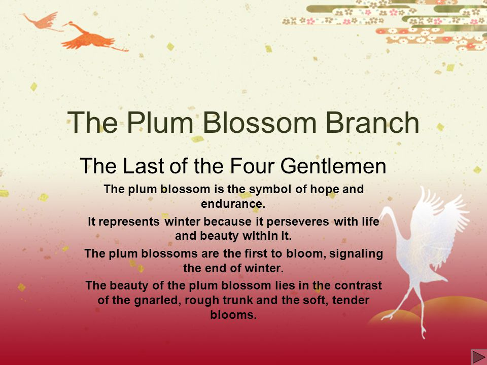 The Plum Blossom Branch The Last of the Four Gentlemen The plum blossom is the symbol of hope and endurance. It represents winter because it persevere