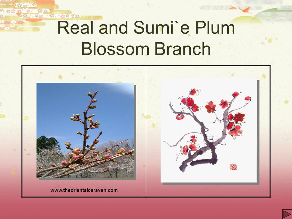 Real and Sumi`e Plum Blossom Branch www.theorientalcaravan.com
