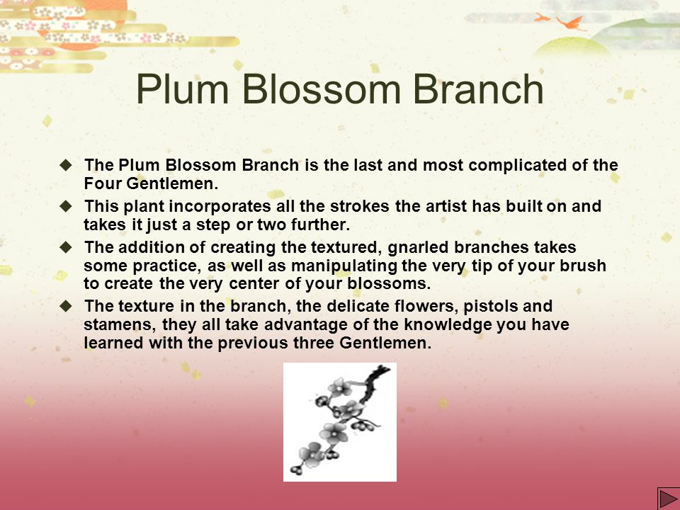 Plum Blossom Branch The Plum Blossom Branch is the last and most complicated of the Four Gentlemen. This plant incorporates all the strokes the artist