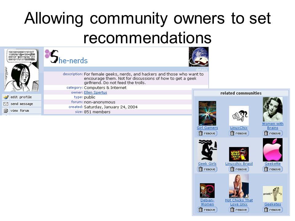 Allowing community owners to set recommendations