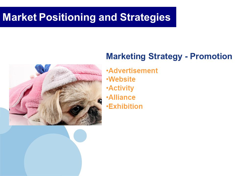 Company LOGO Market Positioning and Strategies Marketing Strategy - Promotion Advertisement Website Activity Alliance Exhibition