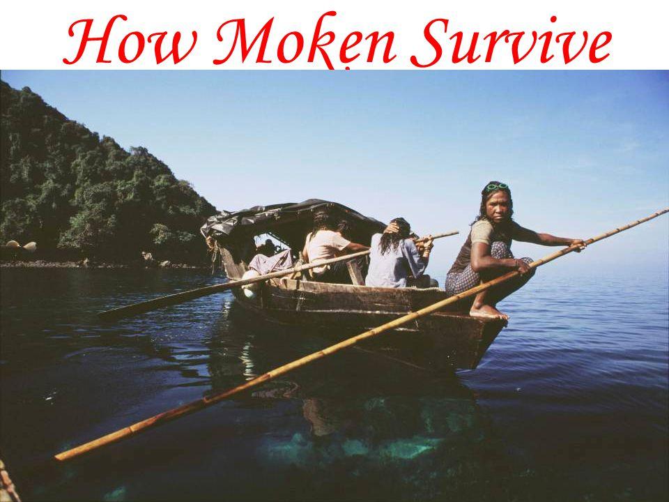 How Moken Survive