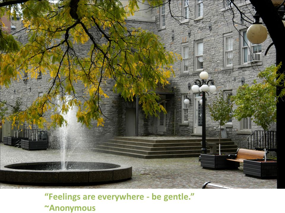Feelings are everywhere - be gentle. ~Anonymous