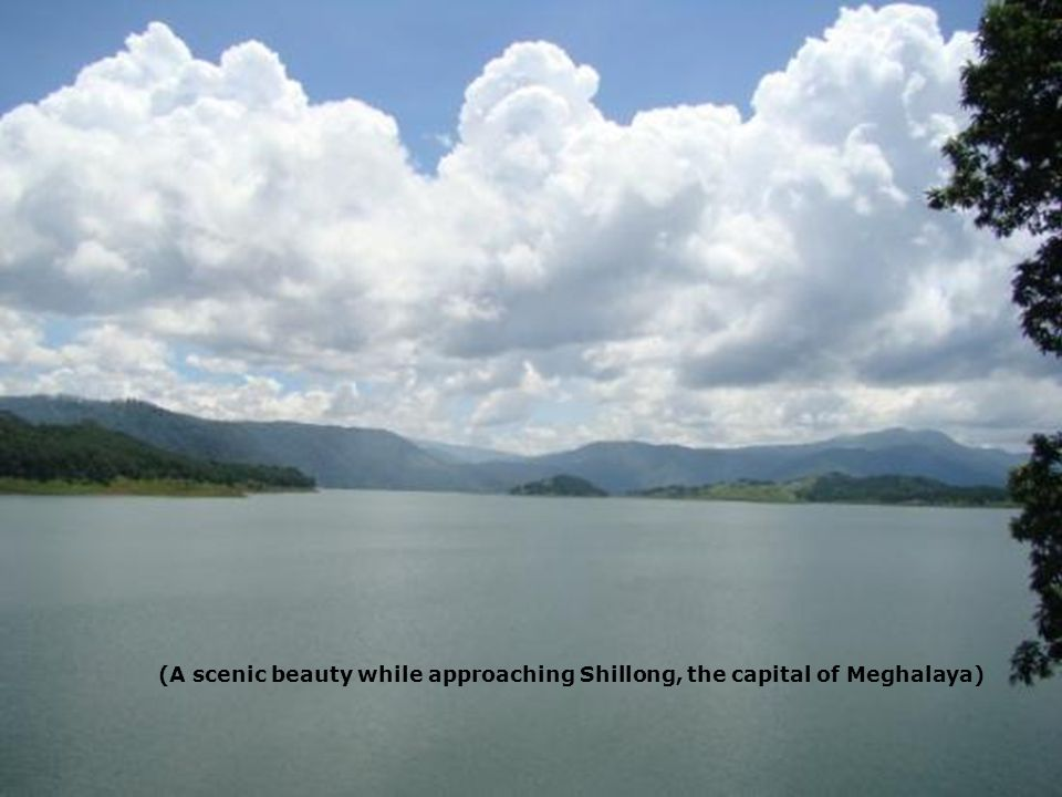 4 June 201429 (A scenic beauty while approaching Shillong, the capital of Meghalaya)