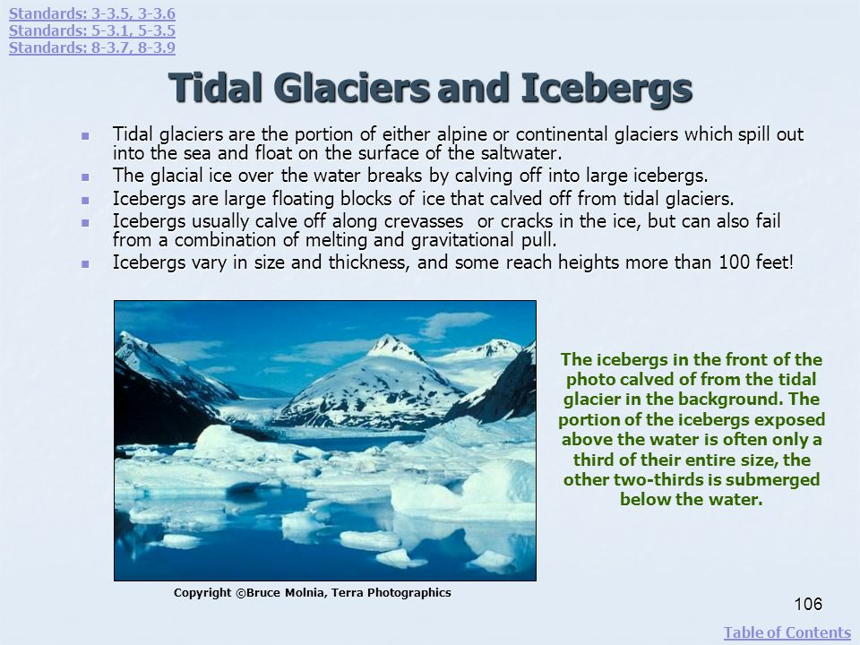 Tidal Glaciers and Icebergs Tidal glaciers are the portion of either alpine or continental glaciers which spill out into the sea and float on the surf