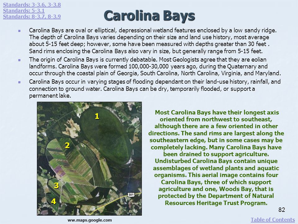Carolina Bays Carolina Bays are oval or elliptical, depressional wetland features enclosed by a low sandy ridge. The depth of Carolina Bays varies dep