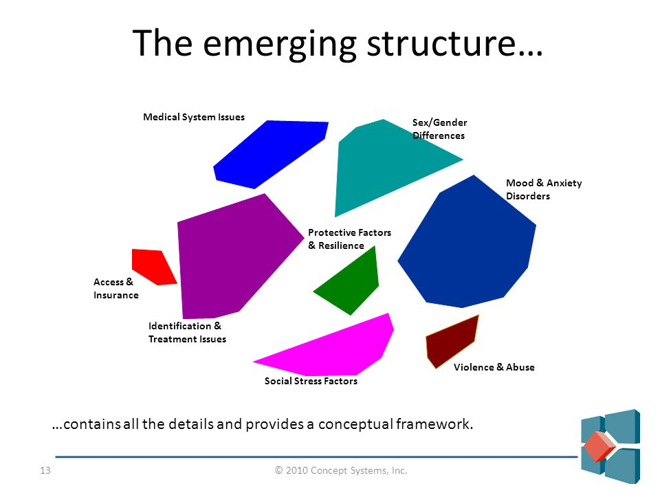 © 2010 Concept Systems, Inc.13 The emerging structure… …contains all the details and provides a conceptual framework.