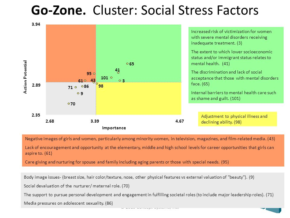 © 2010 Concept Systems, Inc. Go-Zone. Cluster: Social Stress Factors Body image issues- (breast size, hair color/texture, nose, other physical feature