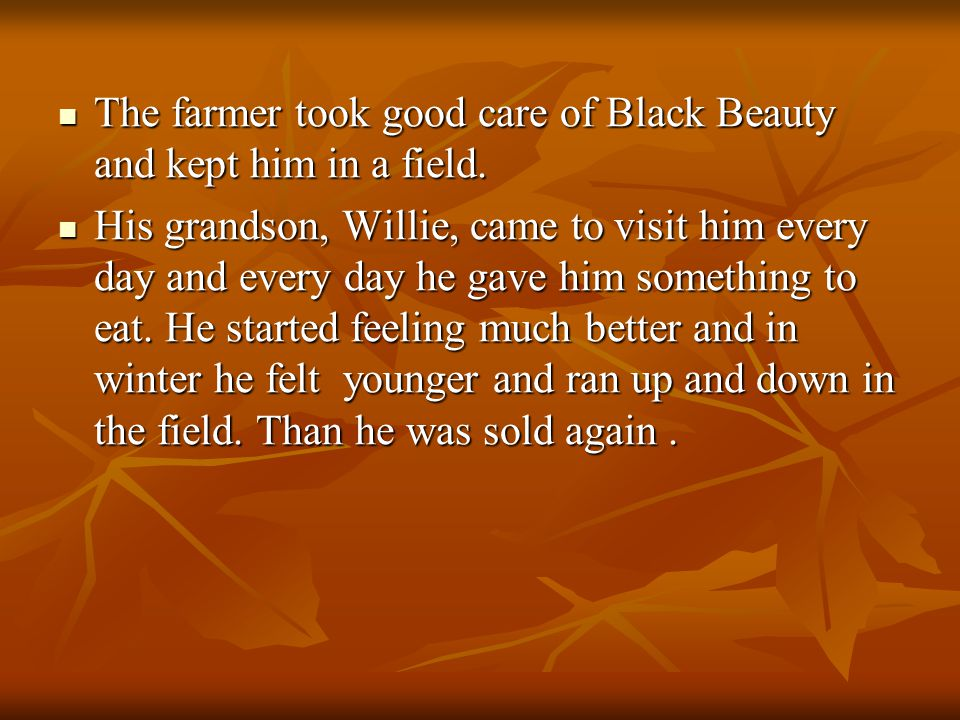 The farmer took good care of Black Beauty and kept him in a field.