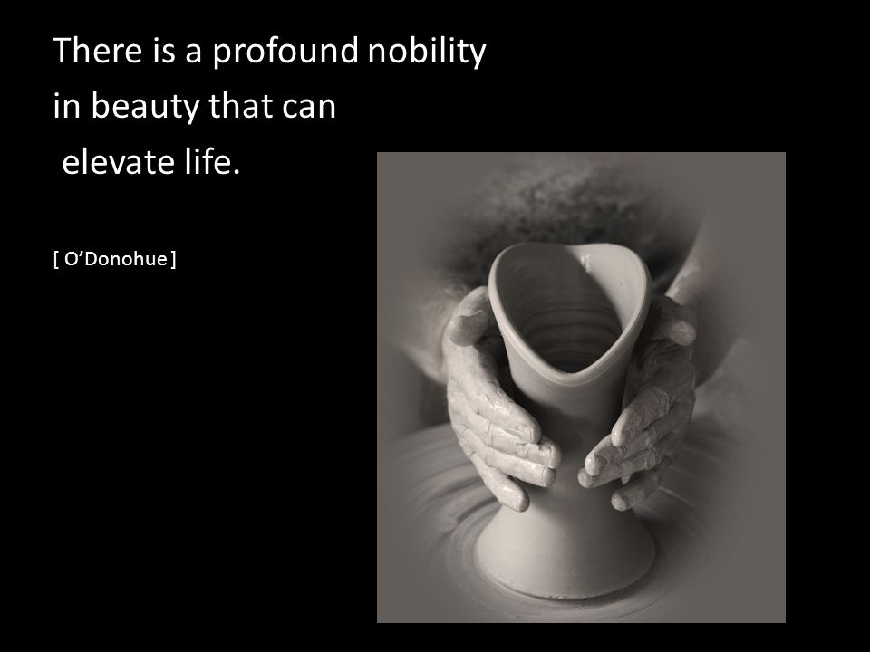 There is a profound nobility in beauty that can elevate life. [ ODonohue ]
