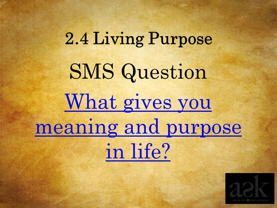 2.4 Living Purpose SMS Question What gives you meaning and purpose in life?