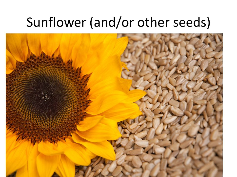 Sunflower (and/or other seeds)