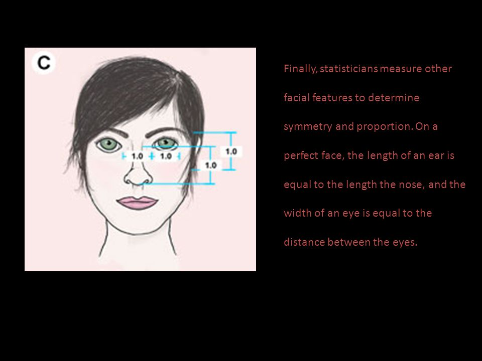 Finally, statisticians measure other facial features to determine symmetry and proportion.