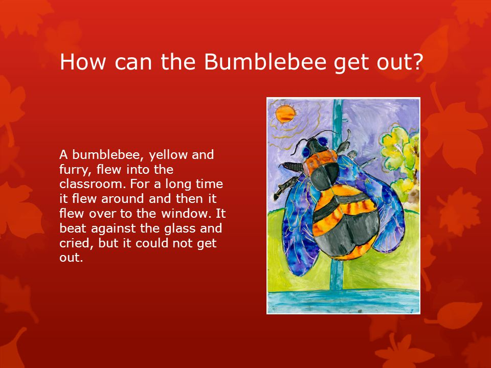 How can the Bumblebee get out. A bumblebee, yellow and furry, flew into the classroom.