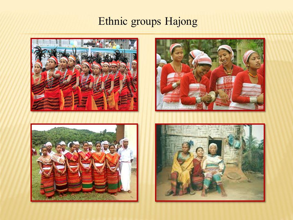 Birishiri Tribal Cultural Academy
