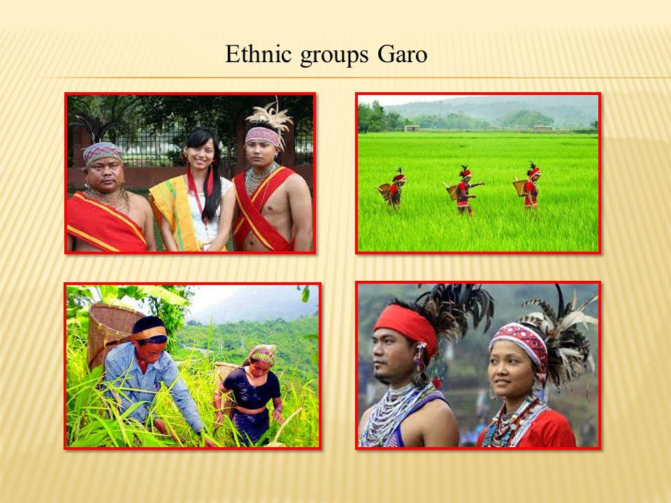 Ethnic groups Hajong