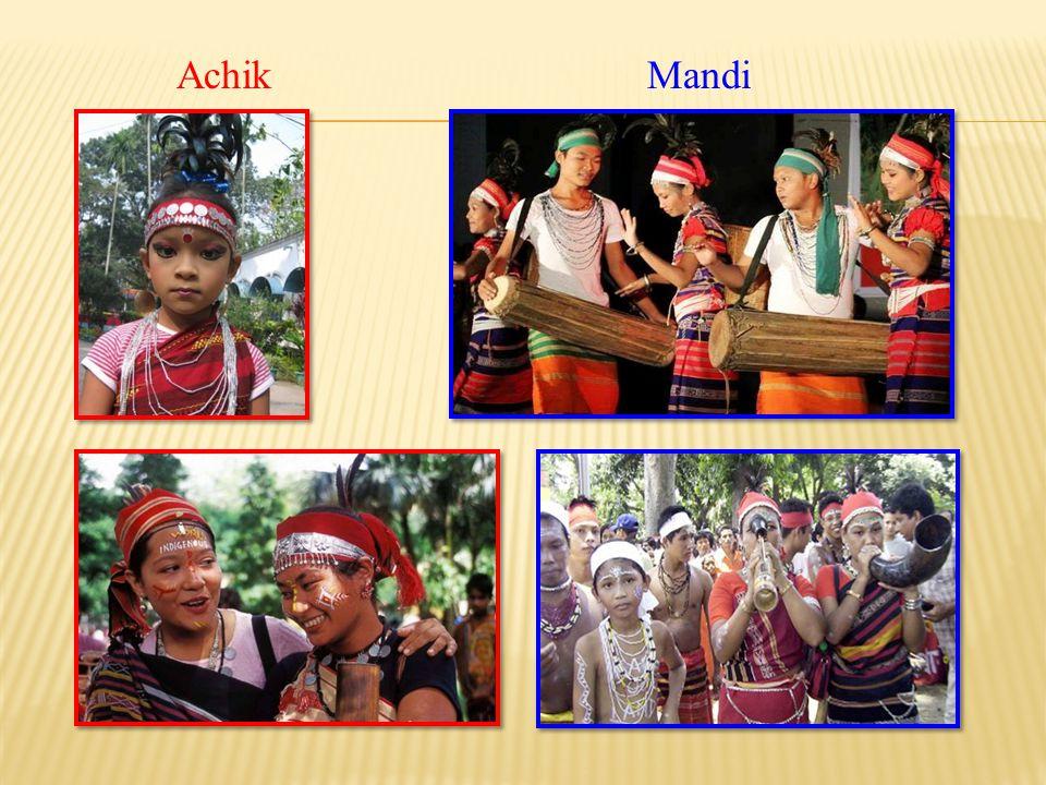 Ethnic groups Garo