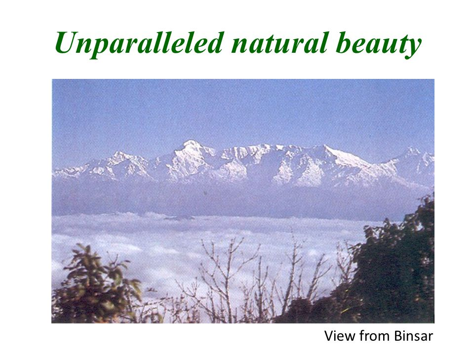 Unparalleled natural beauty View from Binsar