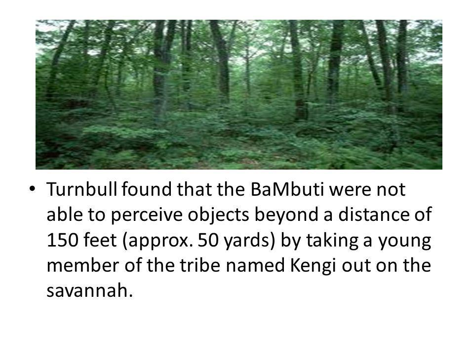 Turnbull found that the BaMbuti were not able to perceive objects beyond a distance of 150 feet (approx. 50 yards) by taking a young member of the tri