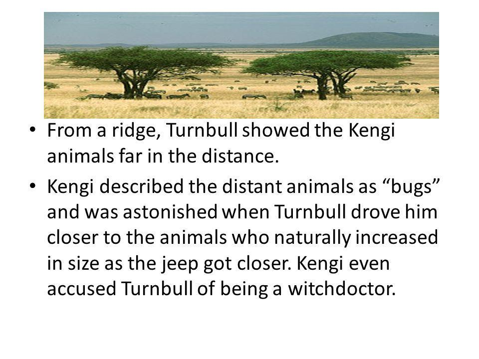 From a ridge, Turnbull showed the Kengi animals far in the distance.