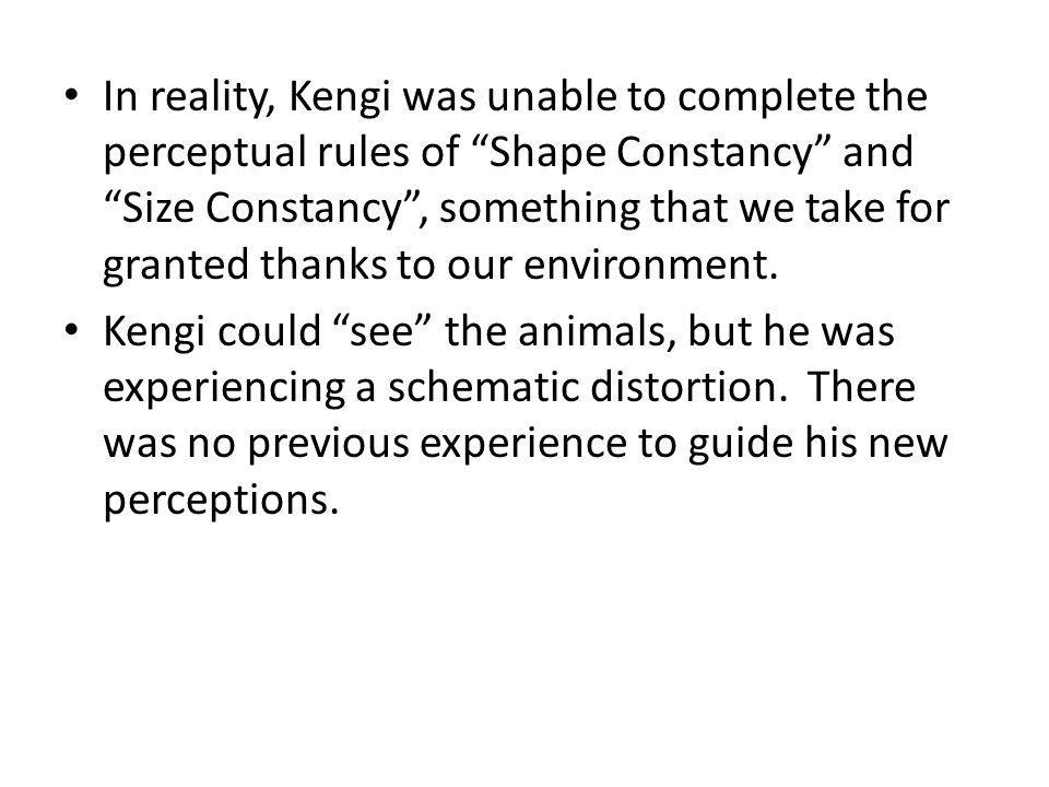 In reality, Kengi was unable to complete the perceptual rules of Shape Constancy and Size Constancy, something that we take for granted thanks to our environment.