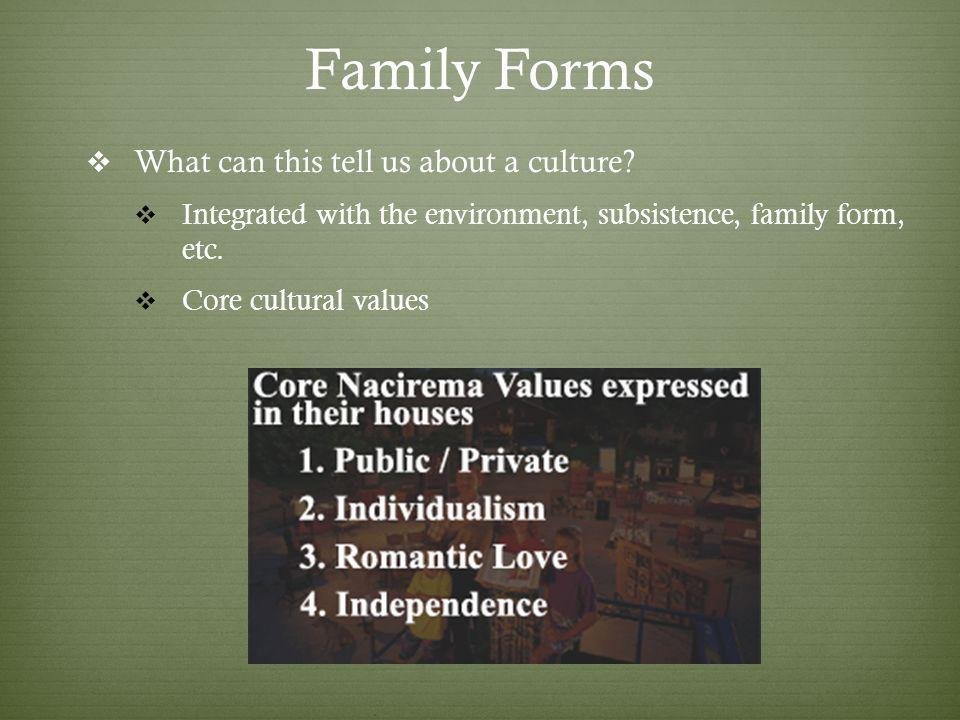 Family Forms What can this tell us about a culture.