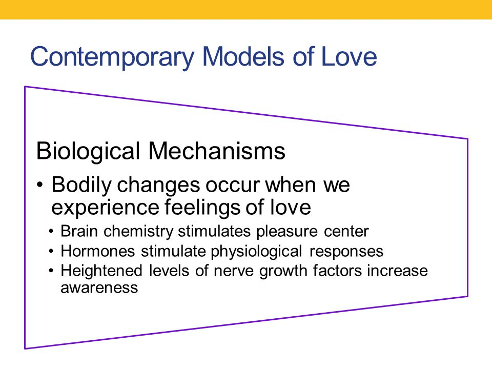 Contemporary Models of Love Biological Mechanisms Bodily changes occur when we experience feelings of love Brain chemistry stimulates pleasure center
