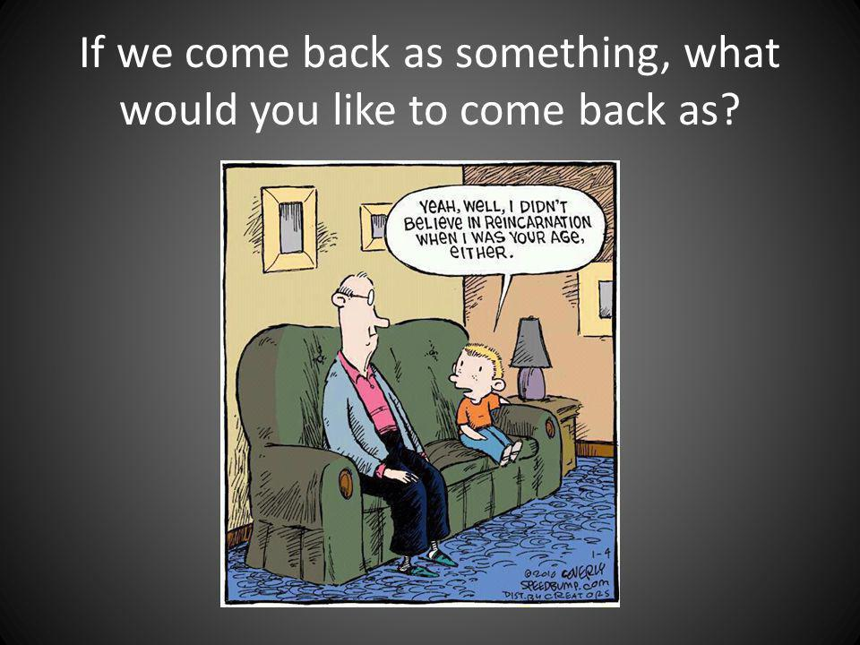 If we come back as something, what would you like to come back as?