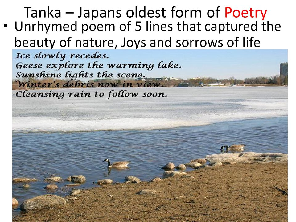 Tanka – Japans oldest form of Poetry Unrhymed poem of 5 lines that captured the beauty of nature, Joys and sorrows of life
