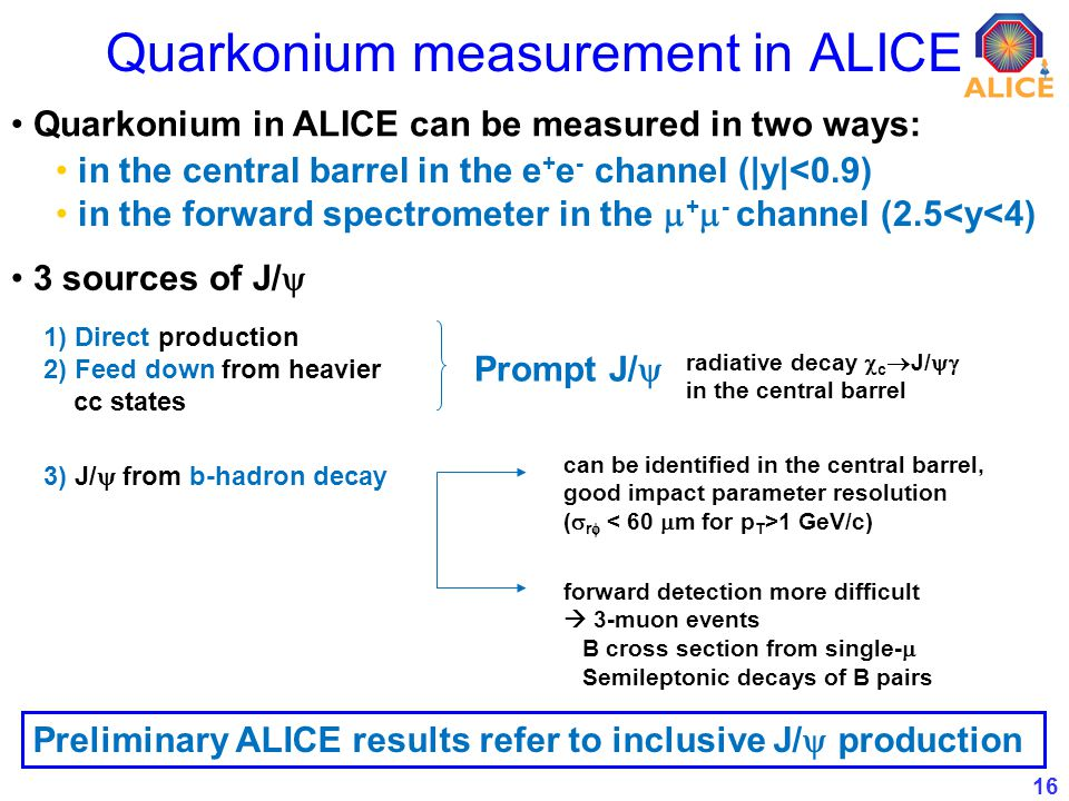 16 Quarkonium measurement in ALICE Quarkonium in ALICE can be measured in two ways: in the central barrel in the e + e - channel (|y|<0.9) in the forw