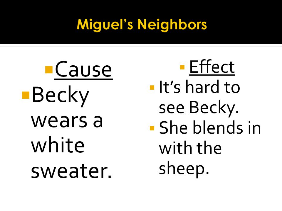 Cause Becky wears a white sweater. Effect Its hard to see Becky. She blends in with the sheep.