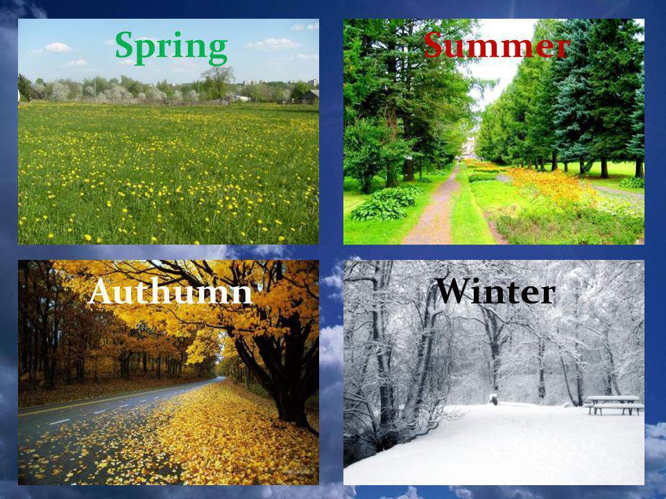 Authumn SpringSummer Winter