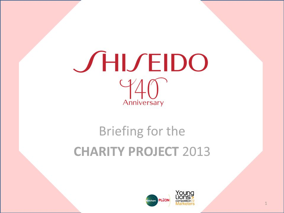 Briefing for the CHARITY PROJECT 2013 1